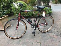 """Raleigh Mustang All Terrain - Mens Mountain Bike 26"""" Wheels - Vintage"""