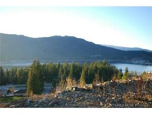 Corner view lot in Sicamous