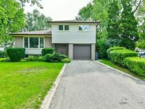 Stunning Fully Renovated 4 Level Side Split W/ Large Family Rm