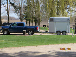 Two Horse Bumper Trailer (light weight) 2014 Stratford Kitchener Area image 1