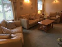 Cream Leather Suite - Large 2 Seater, 2 Seater and Armchair - Excellent quality and condition