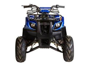 X-mas sale Tao Tao 125D Utility ATV for only $1195!!!