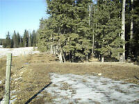 Bergen Acreage With Drilled Well 2 Acres