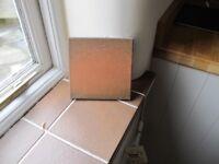 Welsh Quarry Floor Tiles