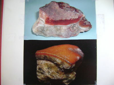 "COLLECTION A - A  NATURALLY FORMED  ""BBQ PORK"" ROCK !!"