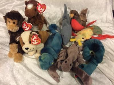 Beanie Babies Lot STINGER Swinger Hoofer Huggins Rainbow Hissy Scurry Early Crun