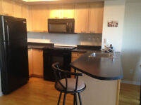 All Inclusive Furnished Downtown Condo