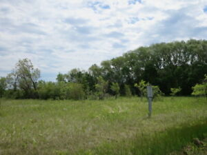 """""""Teulon"""" Treed Vacant Lots 100' X 200' 3 Available ONLY $20,000"""