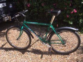 Bike for sale Apollo Avio Green