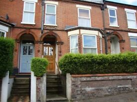 Fully furnished double bedsit in NR3