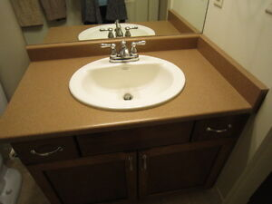 bathroom countertop and sink with taps