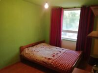 Fully furnished 1 bedroom flat in a prime location close to amenities near Holloway road tube
