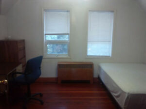 Downtown nice furnished rooms available immediately