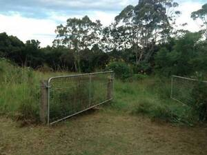 Agistment - 1 Acre Maleny Witta Maroochydore Area Preview