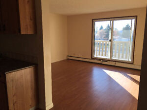 May,June, July half rent in building (Millwoods)