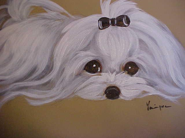 FIND YOUR MALTESE ORIGINAL PAINTING SOLD!