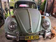 VW Beetle Ryde Ryde Area Preview