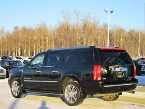 2010 Cadillac Escalade ESV 4x4 Sunroof DVD Leather 8 passenger Edmonton Edmonton Area image 11