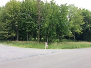 LOT FOR SALE..  Williamsburg, ON