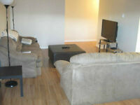 1100 sq.ft apartment for rent - Downtown