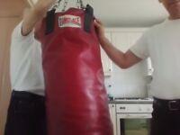 martial arts and boxing punch bag