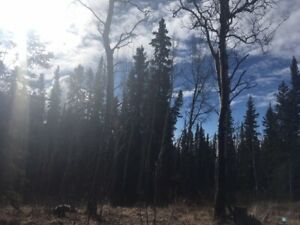 Lot for Sale - Whitehorse Country Residential