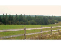 Plamondon  Acreage