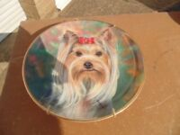 Danbury Mint Yorkshire Terrier Collectors Plate in as New Condition.