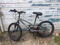 """Apollo Spektor Boys Bike 20"""""""