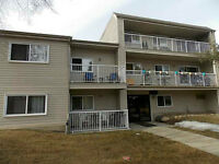Well maintained 1 bedroom condo in Britannia Youngstown