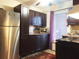 Fully furnished 4 bedroom apt available in Sandy Hill