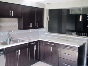 ROOMS 4 RENT in GORGEOUS MODERN OPEN CONCEPT RENOVATED LUX CONDO London Ontario image 2