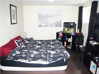 Beautiful 1 bedroom Basement suite for rent Immediately