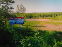 Acreages For Sale/ Off Briggs Rd Lutes Mountain