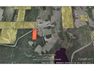 26 Acres with Highway Frontage in the Nazko!