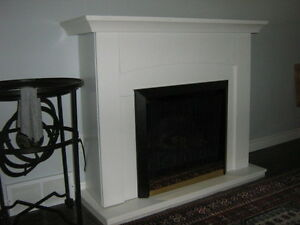Electric fireplace with remote - Dimplex insert with heat unit