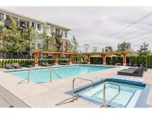 South Surrey, Morgan Creek, 2bd/2bth, Harvard Garden