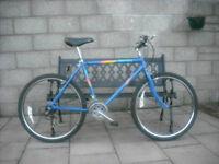 80's Vintage Raleigh Marauder Mountain Bike in Excellent Condition