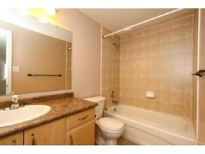 NEWER TOWNHOUSE IN  EAST GALT 3 bed 2.5 bath FERNCLIFFE ST Cambridge Kitchener Area image 5