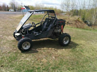WANTED:  250CC Dune Buggy!!!!