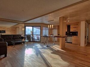 2 bedroom furnished apartment with parking in downtown
