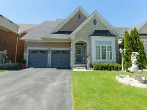 Beautiful Detached House at Bovaird and Sunnyvale rd Brampton