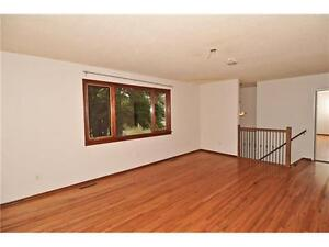Remodeled House for rent in Beautiful Radisson Heights