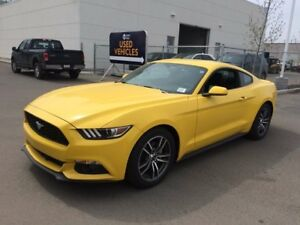 2017 Ford Mustang 2.3L Ecobbost, 100a pkg, SYNC, Reverse Camera,