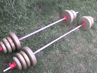 98.8 lb 44.9 kg Gold Dumbbell & Barbell Weights