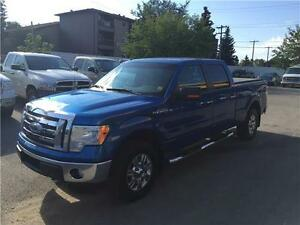 2009 Ford F-150 XLT One of a kind! Sharp Looker! Priced to sell!