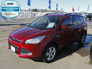 2014 Ford Escape SE | One Tax