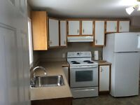 Available Immediately! One Bedroom Apartment For Rent!