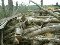 Wood and logs for sale by the trailer load.