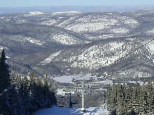 Condo alpin au Mt Edouard, 4 saisons, meublé et déco mise à jour Saguenay Saguenay-Lac-Saint-Jean image 4
